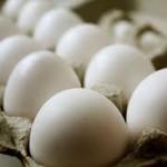 نکات لازم در مورد نگهداری تخم مرغ