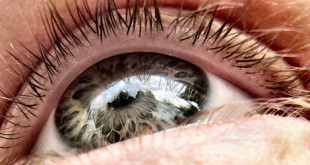برای داشتن چشمان سالم چه کنیم ؟