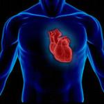 بیماری های قلبی در دیابتی ها بیشتر است
