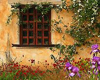 خانه تکانی در عید نوروز