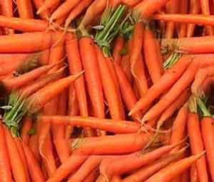 یکی دیگر از خواص هویج