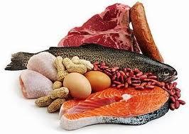 پروتئین مناسب