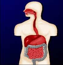 درمان يبوست با رژيم غذايي