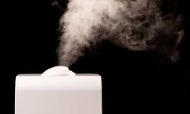فواید و مضرات مرطوب کردن هوای منزل