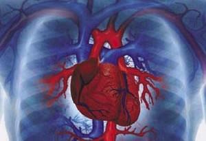اشتباهاتی که در ورزشهای قلبی مشاهده میشود !