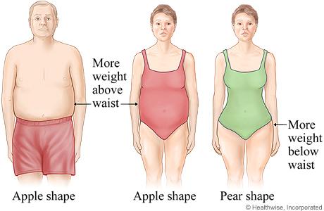 چاقی گلابی بر اثر تغذیه غلط؛ چاقی سیبی ریشه در ژنتیک
