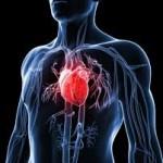 شناخت انواع بیماریهای قلبی