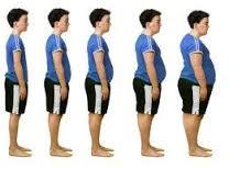 چرا چاق میشویم؟