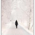 افسردگي در پاييز و زمستان