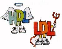 چگونه HDL كلسترول يا همان كلسترول خوب را افزايش دهيم؟
