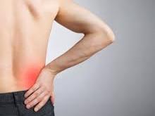 درمانهای گیاهی برای درد کلیه