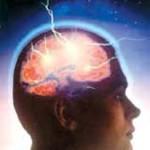 رابطه وضو و ساختمان مغز