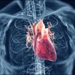 جلوگیری از بیماری قلبی