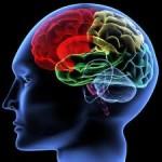 هشت راهکار موثر برای تقویت تمرکز و یادگیری