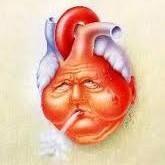 ۲۱ شیوه موثر برای سلامت قلب