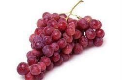 انگور قرمز با بیماری آلزایمر مبارزه می کند