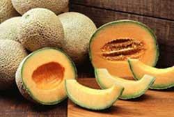 Cantaloupes1