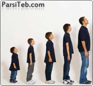 parsiteb-tall4