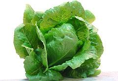 بهترين سبزيها از نظر اسلام
