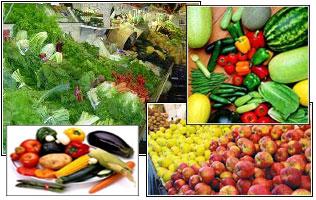 سبزیجات یکی از عوامل فراوان، اما مهم برای پیشگیری از سرطان میباشند.