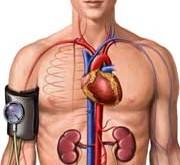 در زمستان بيشتر مراقب فشار خونتان باشيد.
