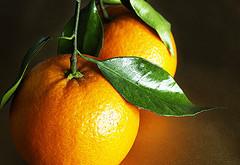 پرتقال از عفونت هاي ويروسي جلوگيري مي كند.