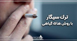 ترک سیگار با روش های گیاهی