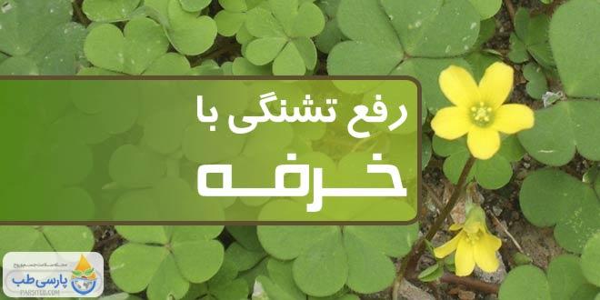 رفع تشنگی شدید با گیاه خرفه در ماه رمضان