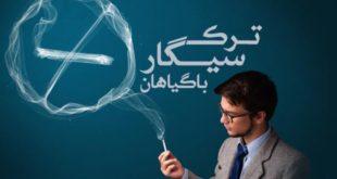 ترک سیگار با روش های گیاهی - پارسی طب