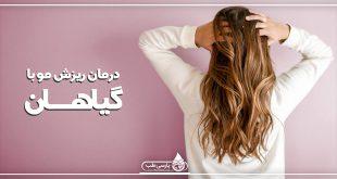گیاهان مفید برای درمان ریزش مو