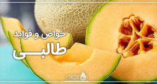 خواص طالبی ، میوه خوشمزه و پرطرفدار تابستانی