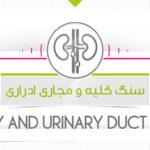 درمان سنگ کلیه با محصولات پارسی طب