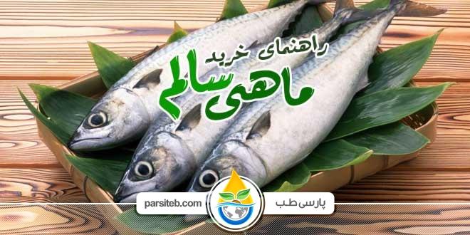 چگونه یک ماهی سالم خریداری کنیم ؟ - پارسی طب
