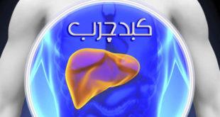 مهمترین علل بروز بیماری کبد چرب چیست ؟ - پارسی طب