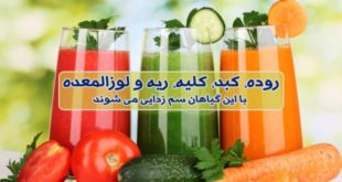 سم زدایی و پاکسازی اعضای بدن با گیاهان دارویی