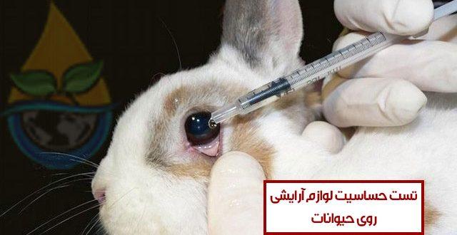 انجام آزمایشهای مختلف بر روی حیوانات برای تست محصولات آرایشی – خشونت علیه حیوانات