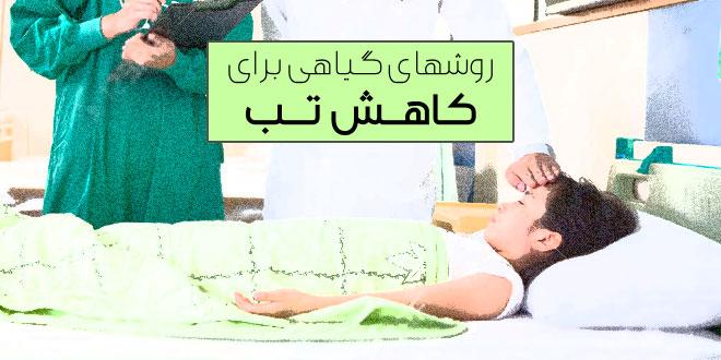 درمان تب با گیاهان دارویی و روشهای خانگی