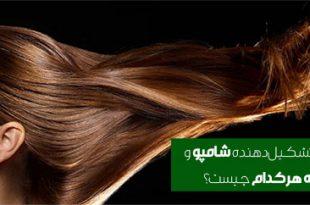 shampoo-formulation