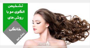 الگوی مو: آیا می دانید چگونه با روش های خانگی می توان الگوی موی را تشخیص داد؟ (بخش دوم)