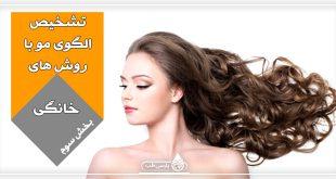 الگوی مو: آیا میدانید چگونه با روش های خانگی می توان الگوی مو را تشخیص داد؟ (بخش سوم)