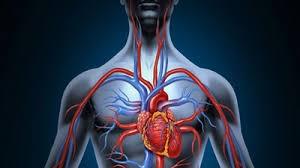 غلظت خون در سیستم اکسیژن رسانی