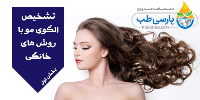 الگوی مو: آیا می دانید چگونه با روش های خانگی می توان الگوی موی را تشخیص داد؟ (بخش اول)
