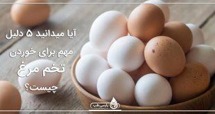 آیا میدانید 5 دلیل مهم برای خوردن تخم مرغ چیست؟