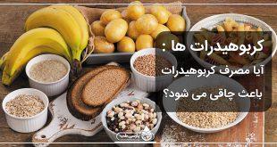کربوهیدرات ها : آیا مصرف کربوهیدرات باعث چاقی می شود؟