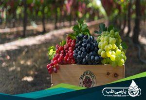 میوه های مضر برای افراد دیابتی