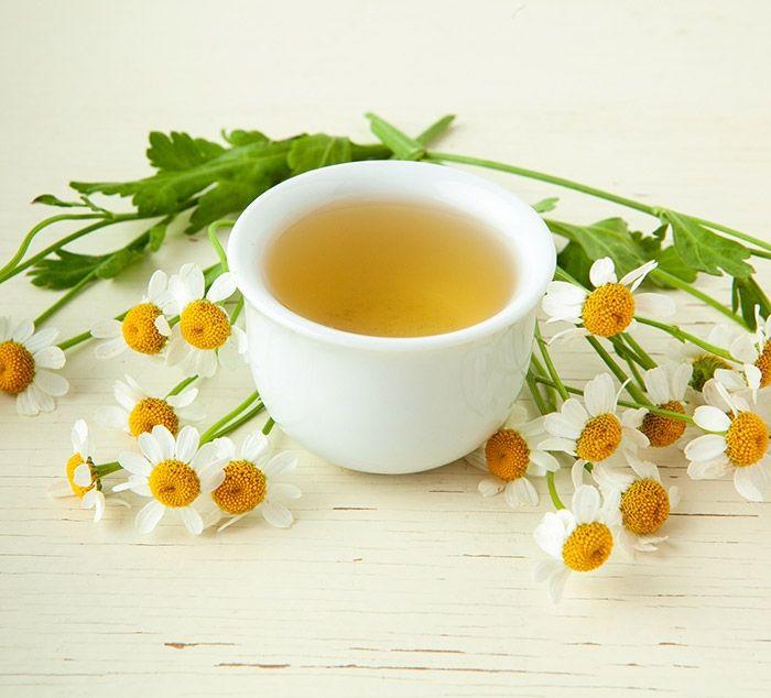نقش چای بابونه در زدودن موخوره