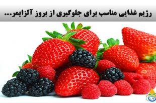 آلزایمر: رژیم غذایی مناسب برای جلوگیری از بروز آلزایمر...