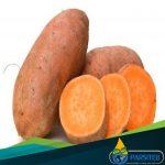 الموادالغذائية المضادة للشيخوخة- بطاطا حلوة