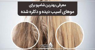 معرفی بهترین شامپو برای موهای آسیب دیده و دکلره شده
