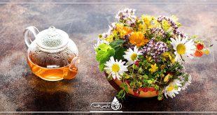 طب سنتی و داروهای گیاهی، گیاهان دارویی، درمان های مکمل و گیاهی
